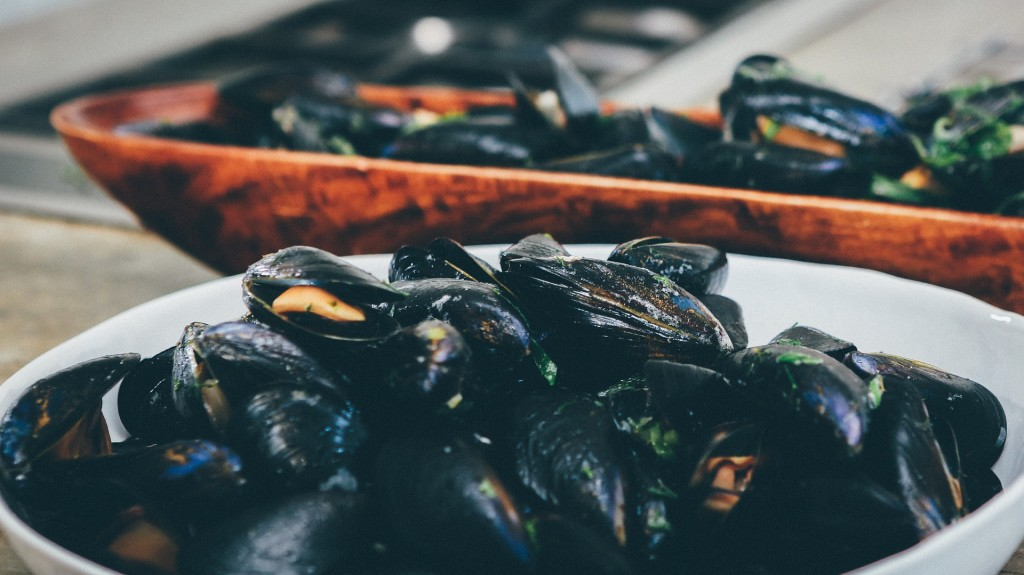 sustainable-mussels